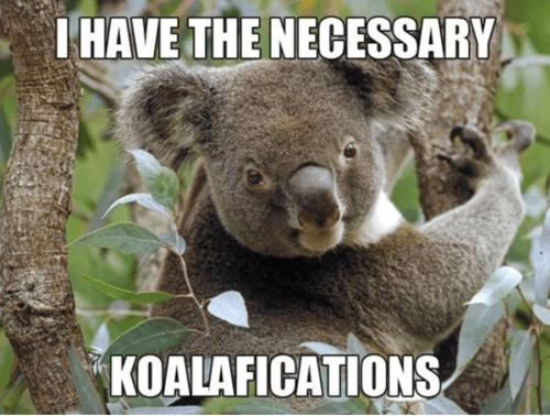 """Du bruker ordet """"kvalifikasjoner"""" så mye at det til slutt ikke gir noe mening"""